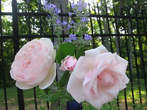Bouquet 014