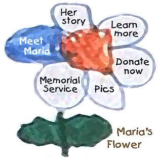 Maria's flower