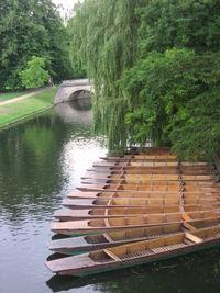 Cambridge 047