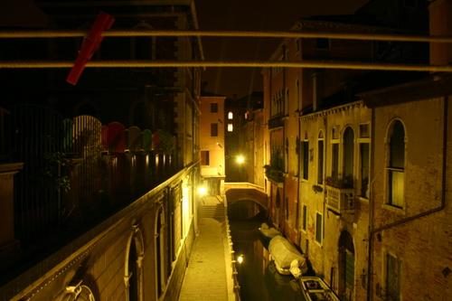 Venice kelsey