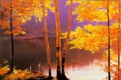 Aspens_in_fall